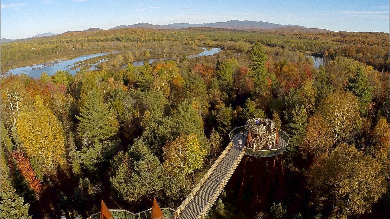 A Trail Across the Treetops | Wild Center