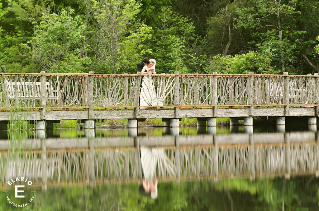 An Adirondack Wedding at The Wild Center in Tupper Lake.