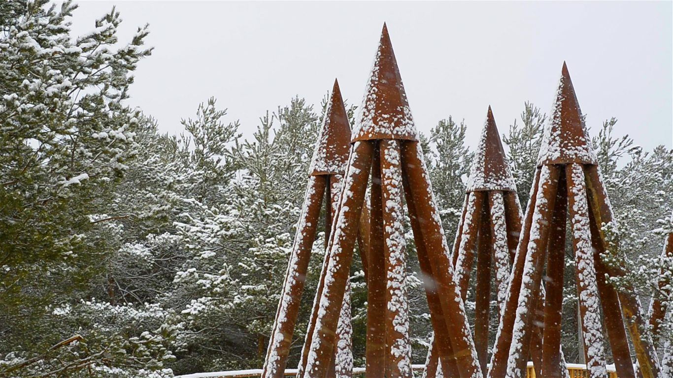 Wild Walk Towers in snow