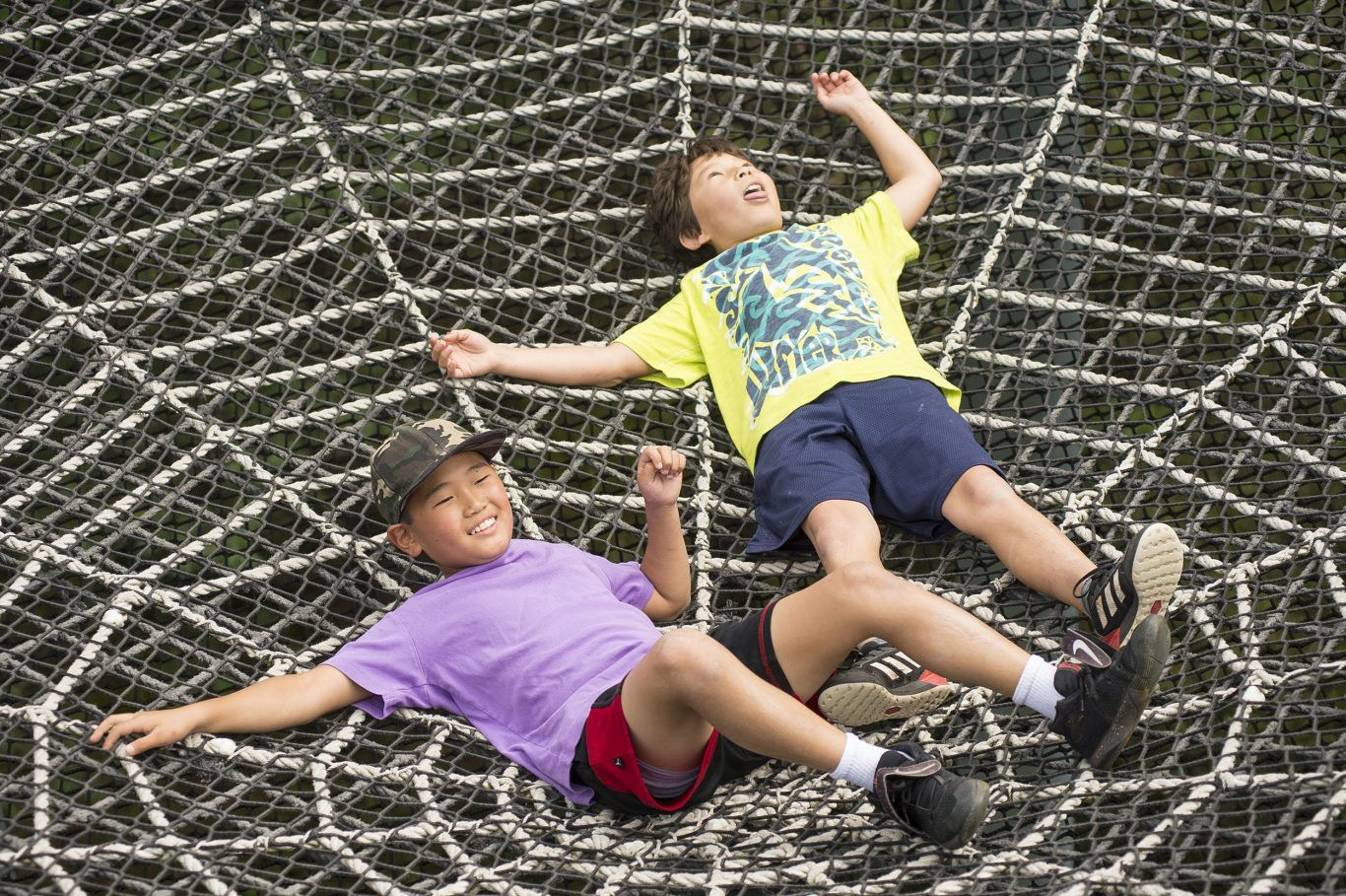 boys in Wild Walk spider web