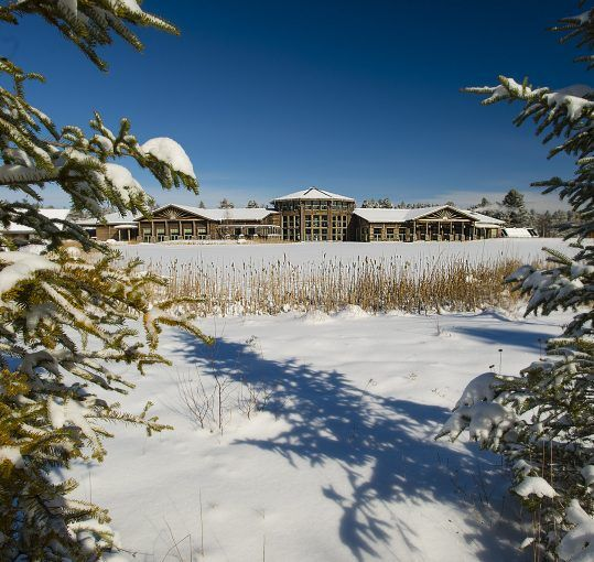winter view of The Wild Center